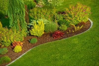 Garden landscaping living stone
