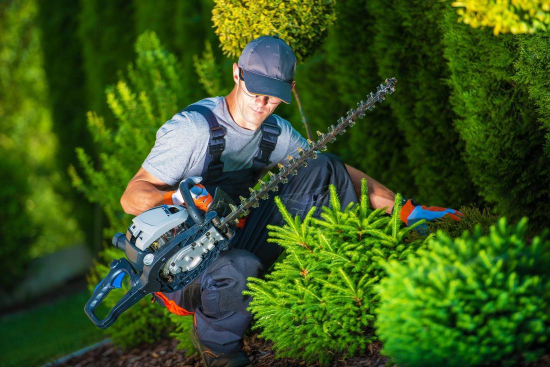 Landscape gardeners silverdale