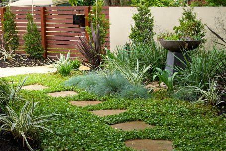 Landscape services hamilton