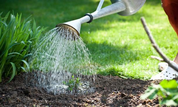 Residential landscaping hamilton
